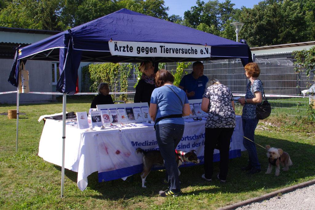 Tierheim Sommerfest am 1213 September 2015  Tierheim