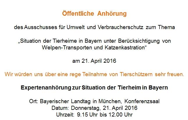 Anhörunbg im Landtag zum Thema Katzenkastration und Welpentransporte