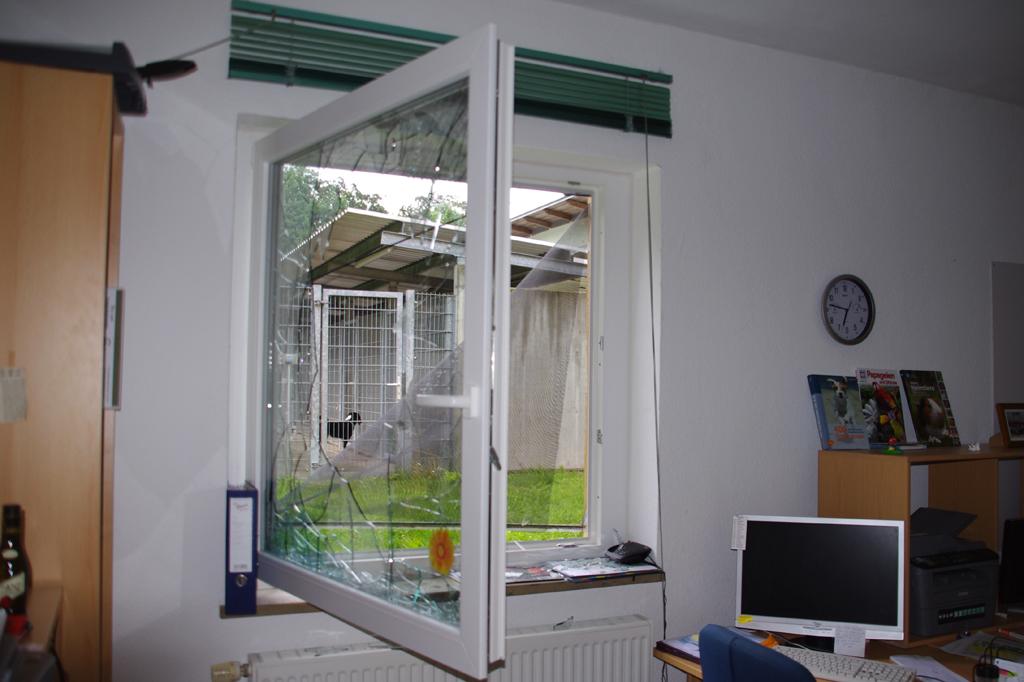 Einbruch im tierheim tierheim for Fenster coburg